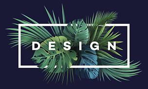 热带雨林,热带气候,背景,植物群,明亮,棕榈叶,鸡尾酒,式样,绘画插图,美