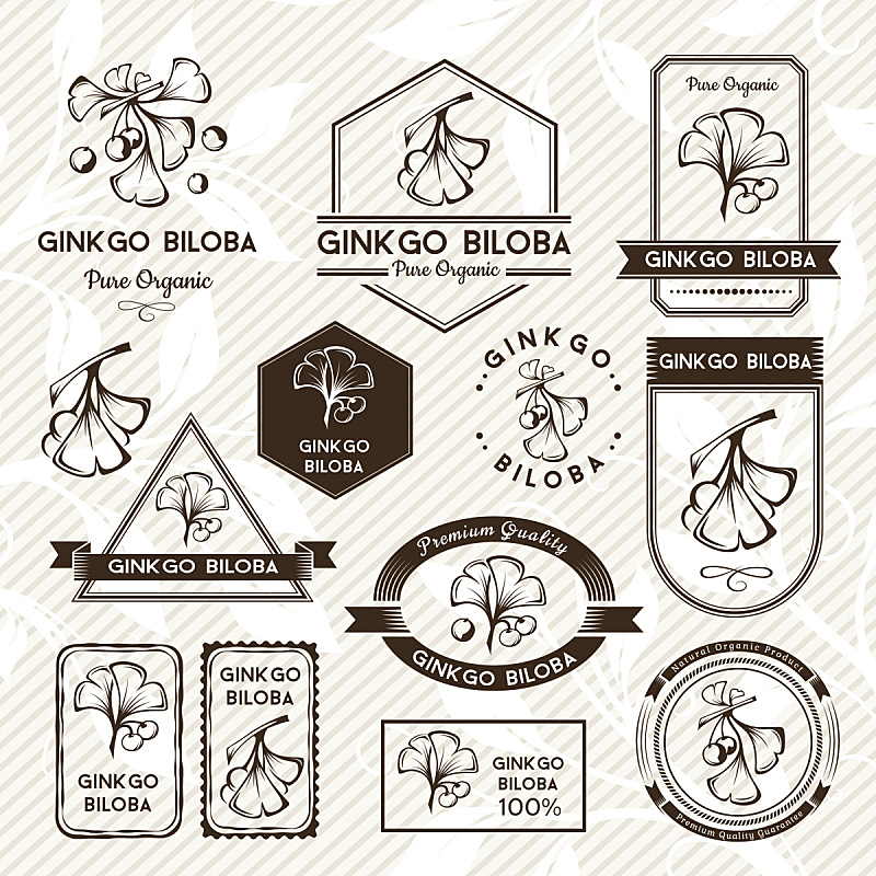 标签,银杏,银杏树,华丽的,背景分离,简单,模板,植物,封印,邮票