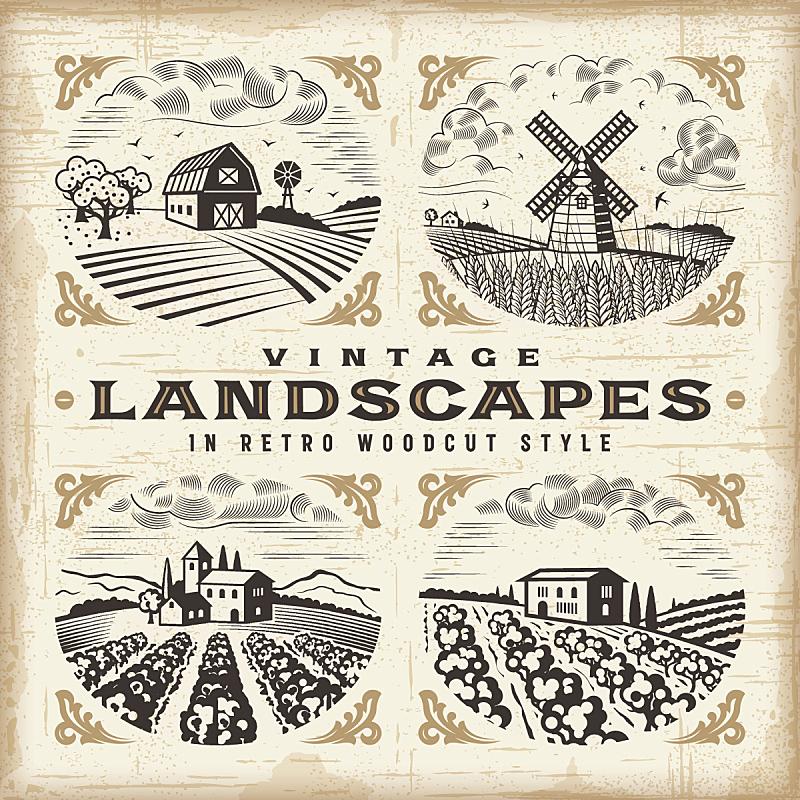地形,木版画,风车,风轮机,农场,葡萄园,小麦,田地,布置,复古
