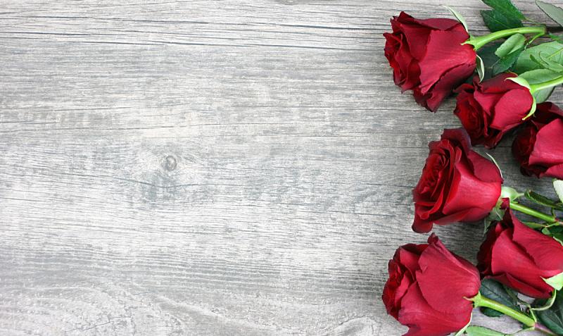 乡村风格,木制,背景,玫瑰,红色,在上面,自然美,贺卡,留白,高视角