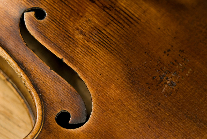 法郎符号,小提琴,洞,古提琴,仪器制作者,英文字母f,大提琴,英文字母s,年轮,艺术