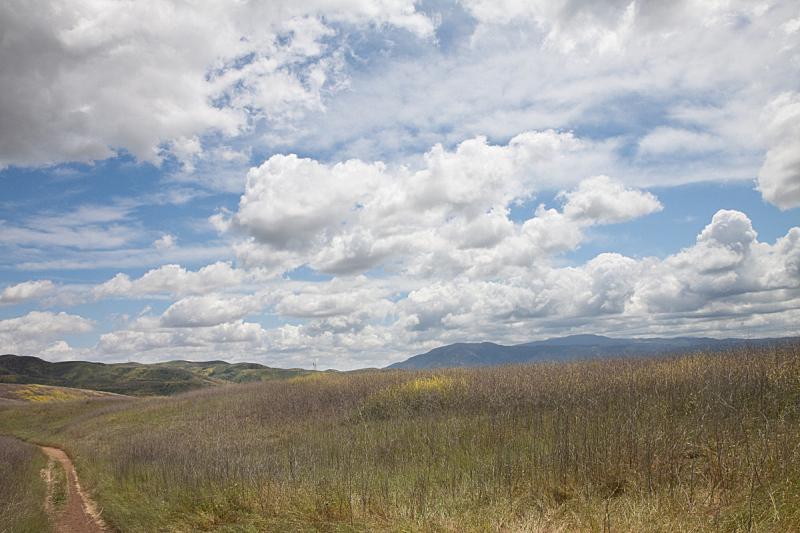 小路,春天,芥菜,天空,留白,风,水平画幅,山,无人,户外