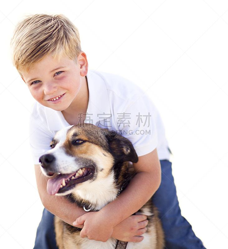 狗,进行中,男孩,男性美,白色,分离着色,可爱的,背景分离,雄性动物,动物