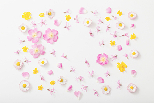 夏天,白色背景,玫瑰,周年纪念,贺卡,边框,浪漫,情人节卡,复古风格,毛茛属植物
