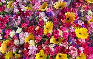 东方市集,花市,清新,户外,康乃馨,非洲雏菊,花店,花卉商,母亲节,夏天