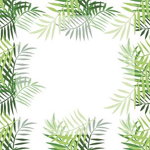 棕榈树,叶子,四只动物,国境线,花纹,波西米亚风,夏威夷,贺卡,边框,无人