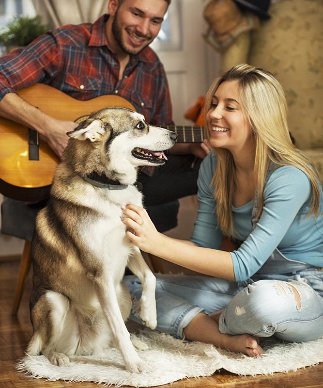 友谊,垂直画幅,进行中,白人,居住区,长发,青年人,雪橇犬,成年的,休闲装