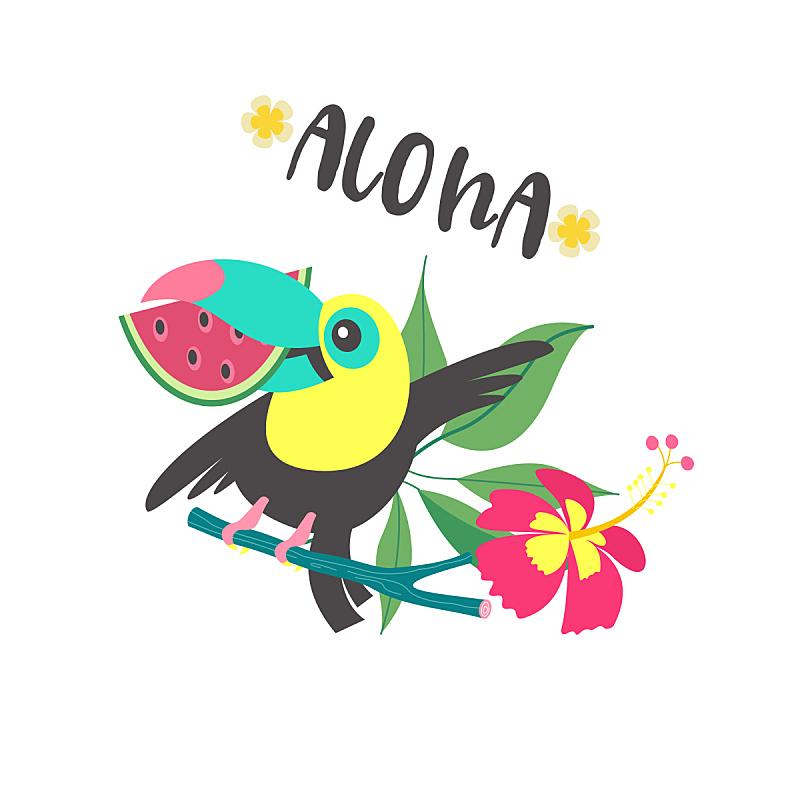 可爱的,巨嘴鸟,夏天,绘画插图,卡通,乐趣,矢量,你好,阿罗哈