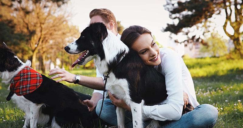 狗,伴侣,自然,自然美,可爱的,草,女人,头发,动物,春天