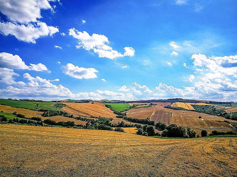 意大利,亚得里亚海,田地,马尔凯大区,栽培植物,山,农业,云,巷,农场