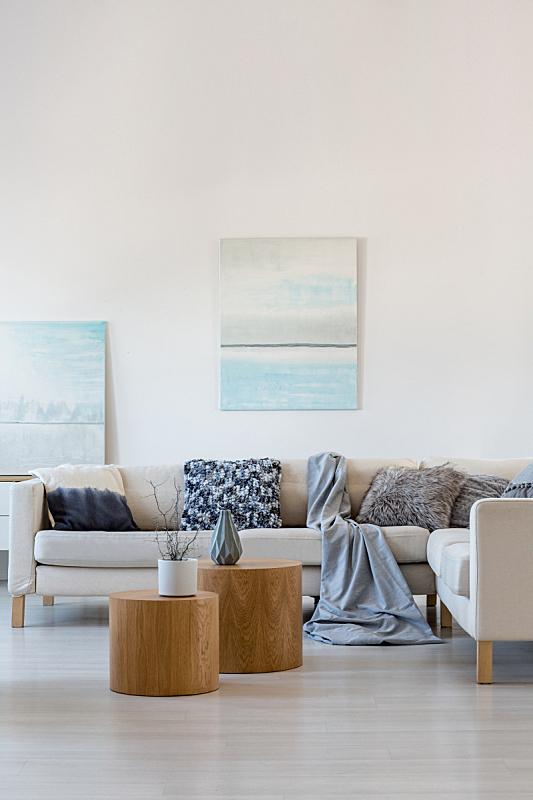 两个物体,沙发,起居室,高雅,室内,绘画艺术品,茶几,角落,舒服,灰色