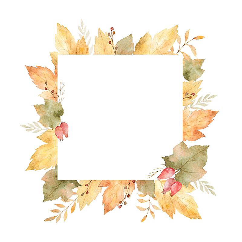 边框,叶子,方形画幅,枝,分离着色,白色背景,水彩画,绘画插图,美,艺术