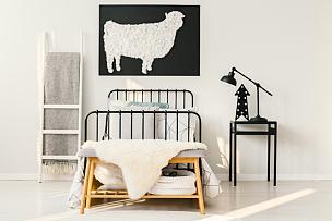 卧室,室内,绵羊,留白,长椅,边框,水平画幅,家庭生活,家具