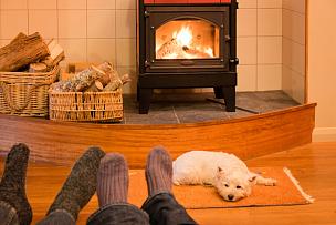 袜子,狗,西高地白猎犬,舒服,火,伴侣,动物足,火炉,水平画幅,家庭生活