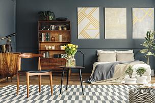 卧室,室内,40-80年代风格复兴,留白,望远镜,郁金香,古老的,家庭生活,家具,居住区