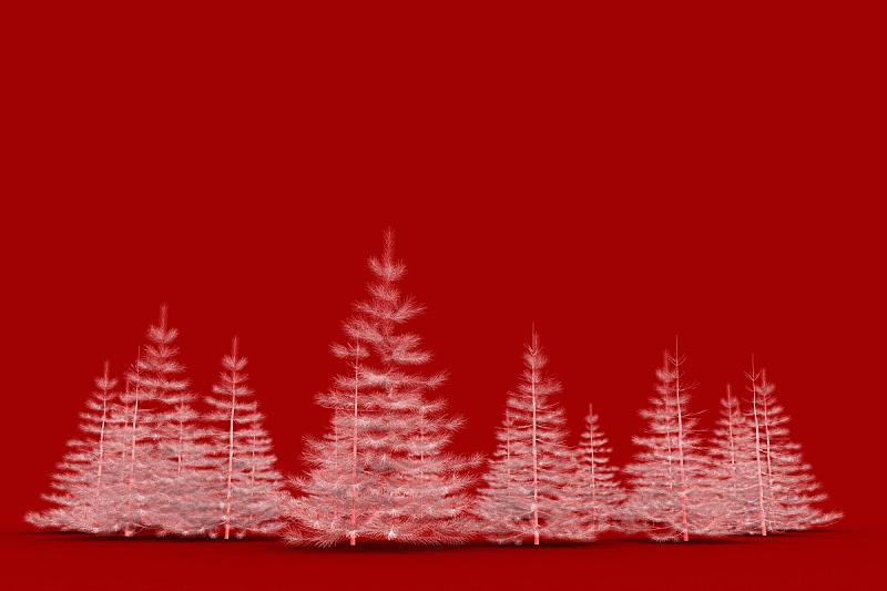 圣诞树,白色,三维图形,红色背景,分离着色,水平画幅,形状,明亮,庆祝