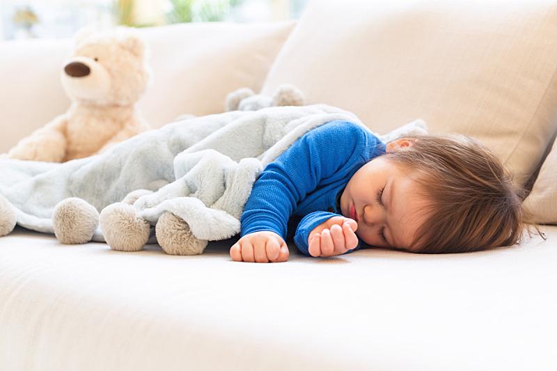男孩,幼儿,小睡,疲劳的,可爱的,泰迪熊,平和,仅日本人,肖像,小的