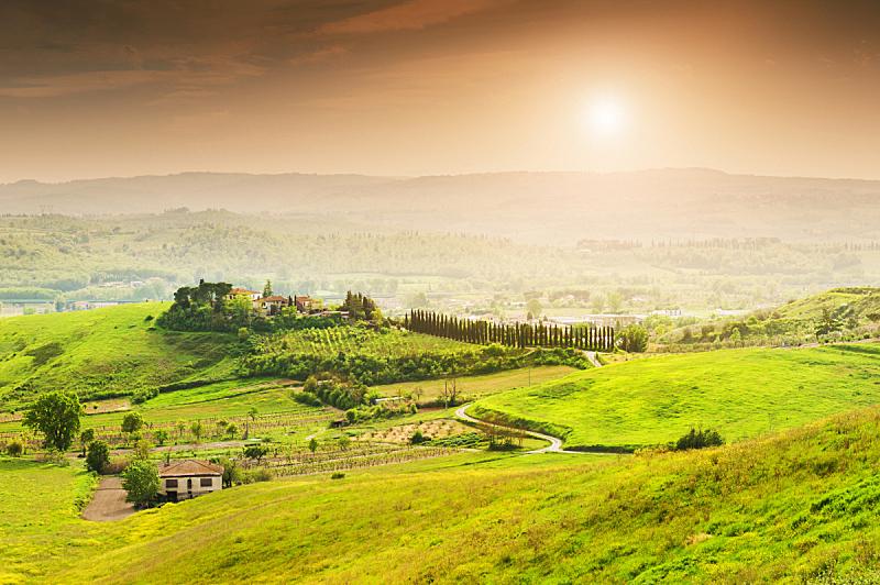 托斯卡纳区,地形,自然美,水平画幅,枝繁叶茂,山,无人,夏天,户外,草