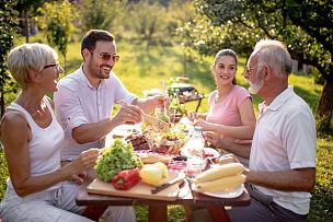 夏天,幸福,家庭,巨大的,游园会,少量人群,休闲活动,水平画幅,父母,旅行者