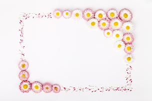 美,留白,边框,母亲节,白色背景,文字,婚礼,雏菊,构图,花