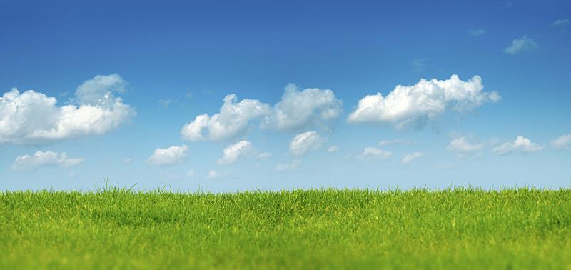 绿色,地形,在上面,运动场,草,草地,草坪,田地,庭院