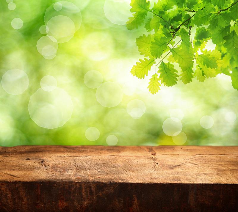 空的,桌子,留白,枝繁叶茂,早晨,夏天,书页,顶部,黎明,灌木