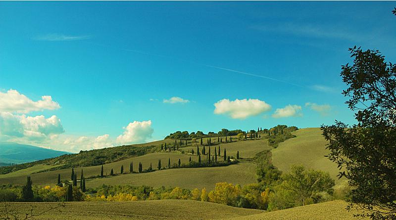 维得斯卡,柏树,自然,天空,水平画幅,地形,无人,丘陵起伏地形,户外,房屋