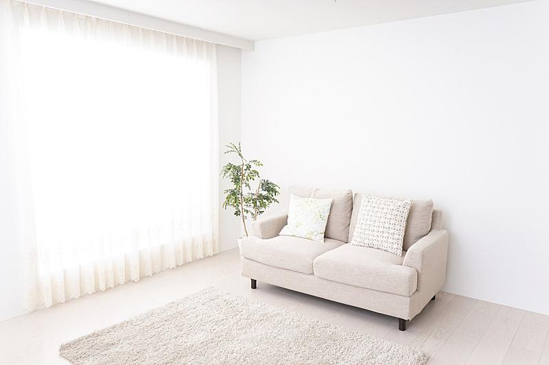 起居室,美,留白,新的,水平画幅,无人,绘画插图,纯净,房地产经纪人,家具