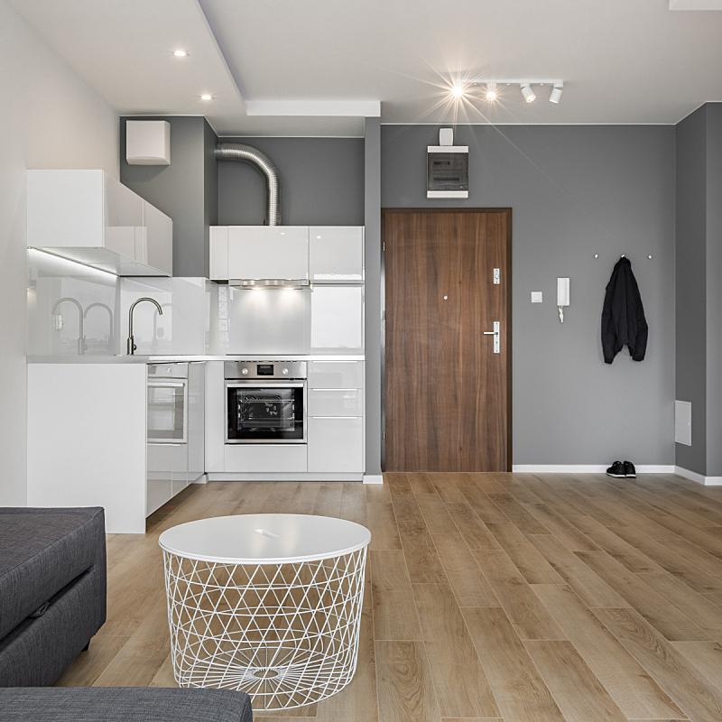 公寓,开放式厨房,茶几,烤炉,水龙头,门,灶台,豪宅,波兰,新的