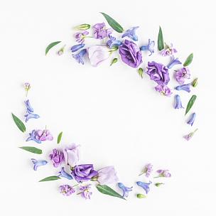 花环,白色背景,多色的,多样,丁香花,紫色,女性特质,花纹,国际妇女节,母亲节