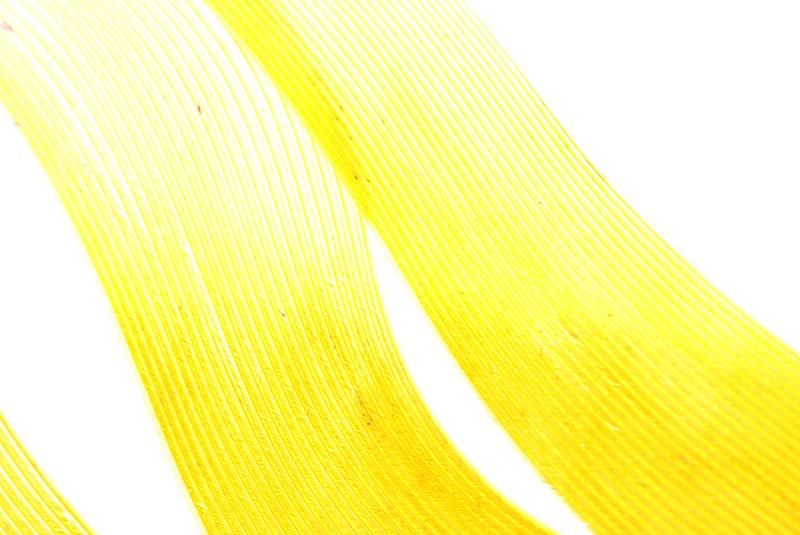 翎毛,纹理,抽象,黄色,背景,复活节,艺术,水平画幅,符号,鸟类