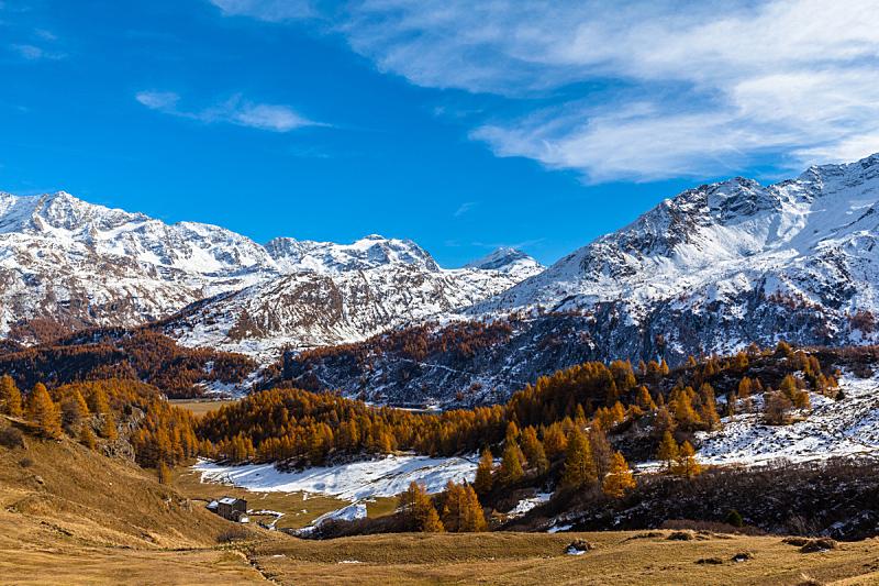 湖,秋天,全景,风景,金色,水平画幅,雪,旅行者,户外,科尔瓦奇峰
