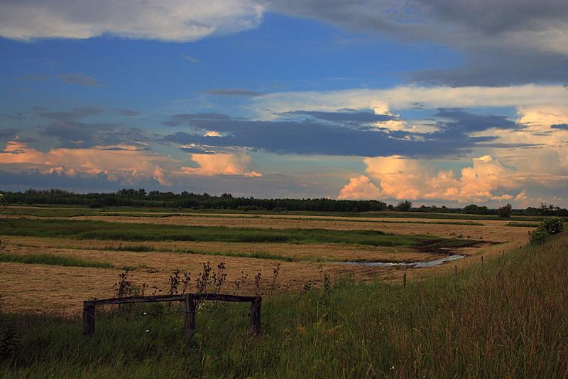 绿色,地形,平原,自然,天空,美,草地,宁静,水平画幅,橙色
