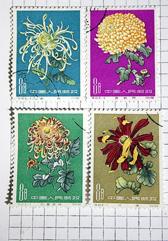 中国印章,1960,垂直画幅,四个物体,小的,古典式,仅一朵花,1960年-1969年,彩色图片,菊花