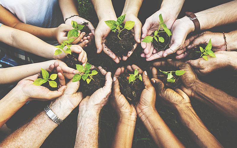 环境保护,手,人群,航拍视角,人,负责任的企业,社区,力量,公司企业,团队