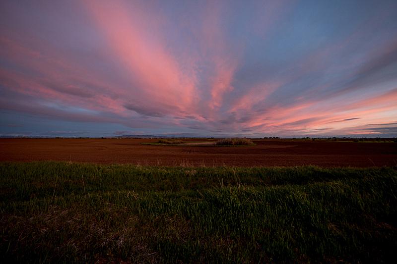 爱达荷,田地,美国,水平画幅,无人,农场,云,户外,多色的,日落