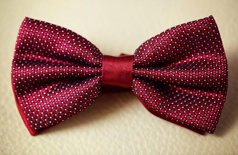 领结,高雅,新郎,燕尾服,领巾,无尾礼服,躯干,茄克,水平画幅,衣服