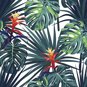 热带气候,式样,矢量,绿色,背景,鸡尾酒,擎天属,植物群,花