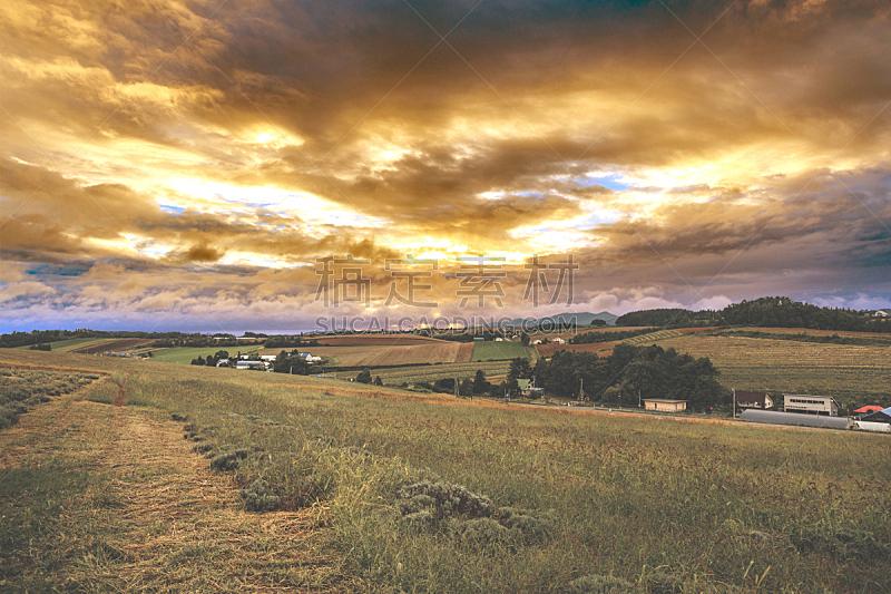 天空,云,留白,田地,水平画幅,无人,日本,乡村路,黄昏,户外