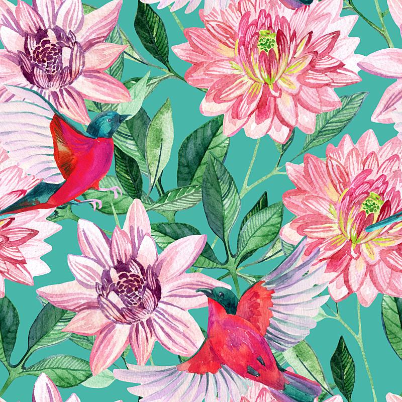 鸟类,紫苑,四方连续纹样,水彩画,墨西哥,食蜂鸟,色彩鲜艳,热带气候,手工着色