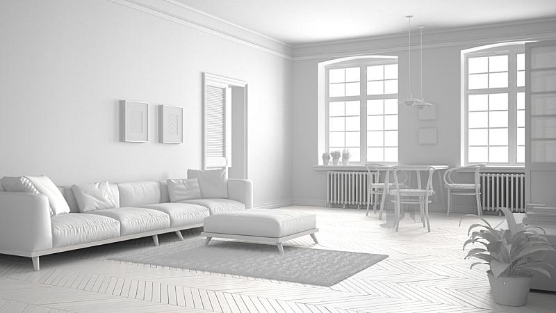 斯堪的纳维亚人,白色,室内设计师,起居室,极简构图,新的,边框,水平画幅,别墅,椅子