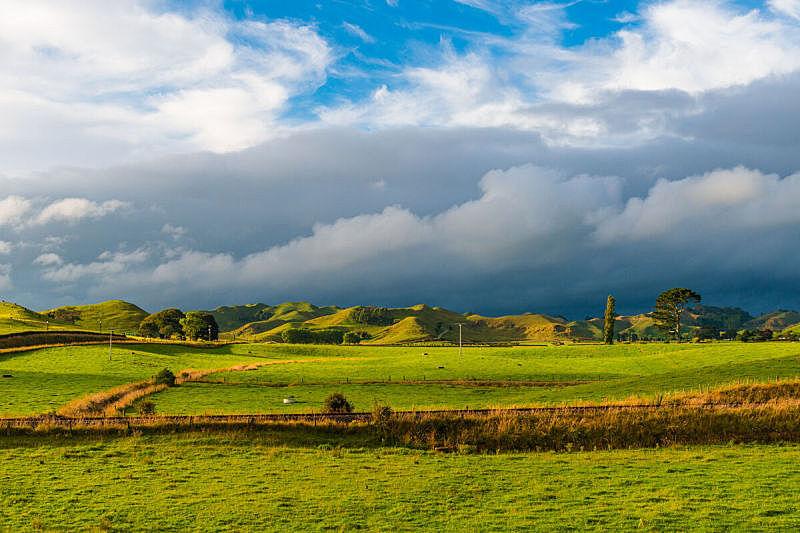 山,绿色,新西兰,山谷,新西兰南岛,风景,尖峰,家牛,天空,水平画幅