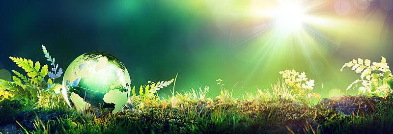 苔藓,地球形,绿色,概念,水平画幅,地球日,无人,玻璃,草,明亮