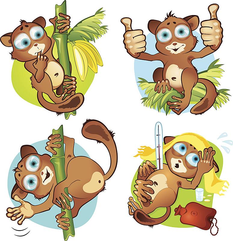 眼镜猴,舞台,一只动物,猴子,彩色背景,药丸,草,毛巾,儿童,动物眼睛