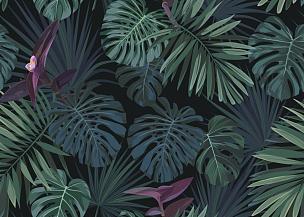 植物学,热带气候,绿色,暗色,矢量,式样,背景,棕榈叶,四方连续纹样,异国情调