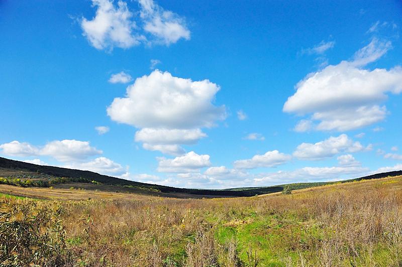 天空,田地,蓝色,云,背景,在上面,水平画幅,无人,夏天,生长