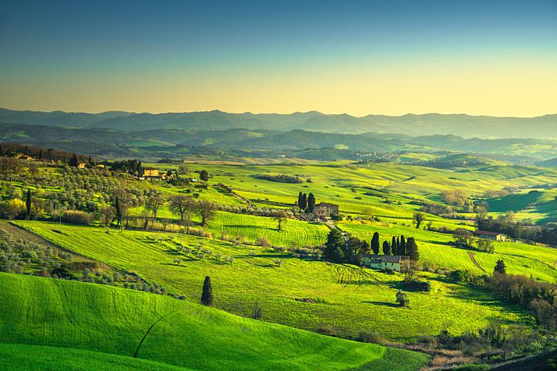 田地,绿色,全景,丘陵起伏地形,瓦尔泰,托斯卡纳区,意大利,水平画幅,山,户外