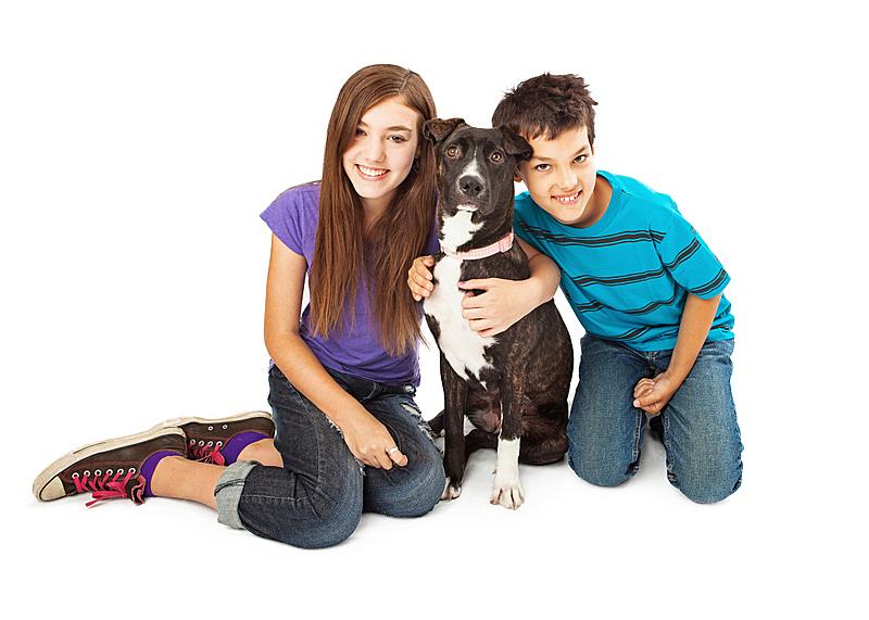 男孩,狗,现代,女孩,留白,女人,纯种犬,水平画幅,家畜,白色背景