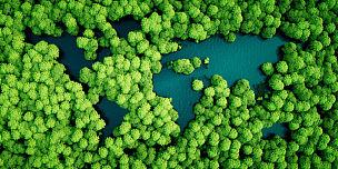 雨林,湖,绘画插图,地球形,概念,环境保护,代表,三维图形,可持续生活方式,可持续资源