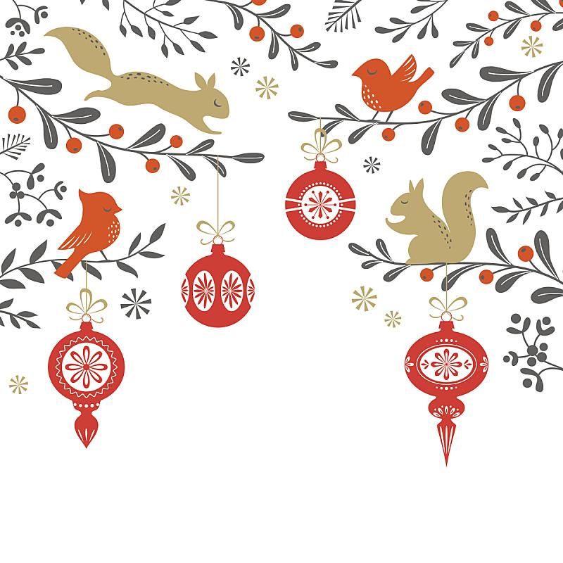 树林,背景,松鼠,鸟类,北美红鸟,圣诞装饰,动物,节日,榭寄生